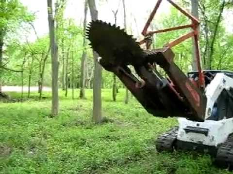 how to clean saw for trees