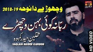 Rabba Na Koi Bhenr || Saqlain Haider || New Noha || TP Moharram