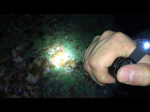 Super Bright 100 Lumens LED Flashlight Review (Dollar Tree Item) 🔦