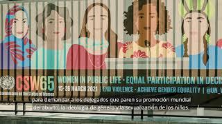 La Comisión de la Condición Jurídica y Social de la Mujer de la ONU no incluye el aborto
