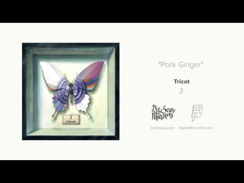 """Pork Ginger"" by tricot"