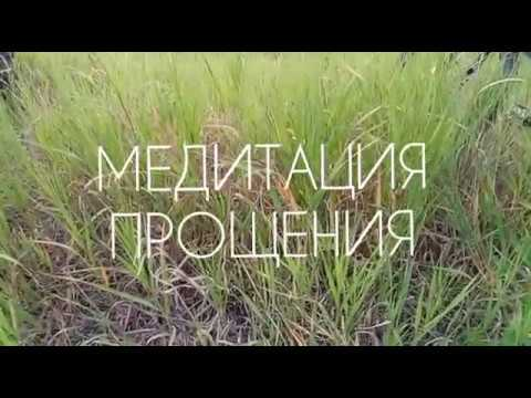 Медитация Прощения, текст читает Елена Лягова