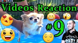 """Video🎬 Compilation😀Reactions😨 #9th✔️ """"AnimOls Compilation""""🎋(Video not mine, link in description✅)"""