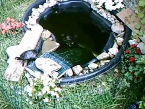 Laghetto tartarughe youtube for Laghetto tartarughe