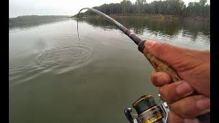 НЕ ЗРЯ НА ВЕЧЕРКУ ВЫШЕЛ!! Осенний джиг на Оби! Рыбалка ,коряги,пески. Щука судак.