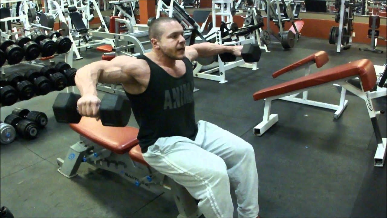Image result for seated lateral raises with dumbbells