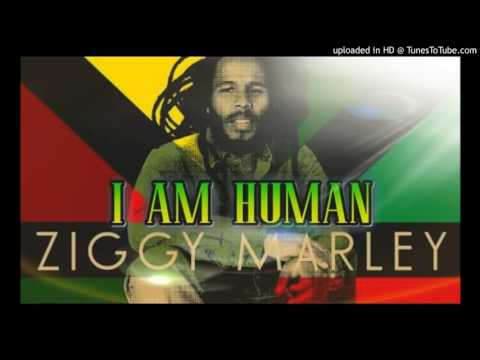 Ziggy Marley - I Am Human (Reggae Music 2017)