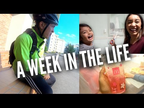 A WEEK IN THE LIFE IN OKINAWA, JAPAN | shane&mel