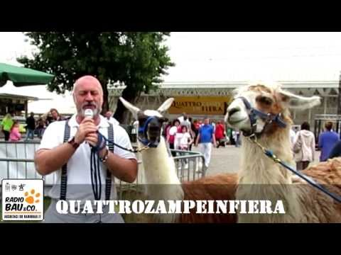 Quattrozampeinfiera 2013 – The best of