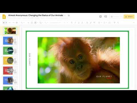 Google Docs adds 13 new animal avatars for Endangered Species Day