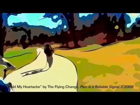 The Flying Change - Pain Is A Reliable Signal (II)
