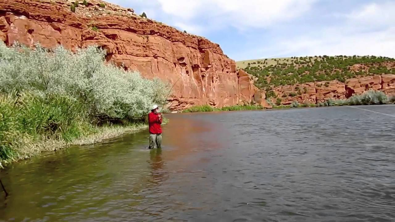 guided drift boat fly fishing in wyoming dunoir fishing adventures, Fly Fishing Bait