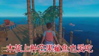 木筏求生10:种了两棵芒果树,鲨鱼来得更勤了,鲨鱼也爱吃芒果?