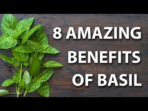 8 Health Benefits of Basil