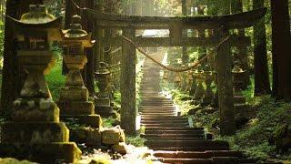 【海外の反応】「神秘的過ぎて怖い…」日本神社の存在感が世界中を圧倒!その別格すぎる美しさに外国人から感動と驚愕の声