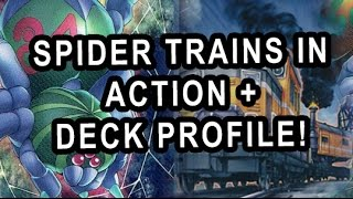 SPIDER TRAINS IN ACTION + DECK PROFILE!