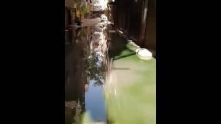"""""""واتس اب برلمانى""""..فيديو عن كارثة مياه الصرف بالقصبجى..ومواطن: رئيس الشركة مش بيرد"""