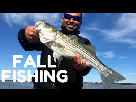 Fall Fishing For Striped Bass On The Rappahannock River