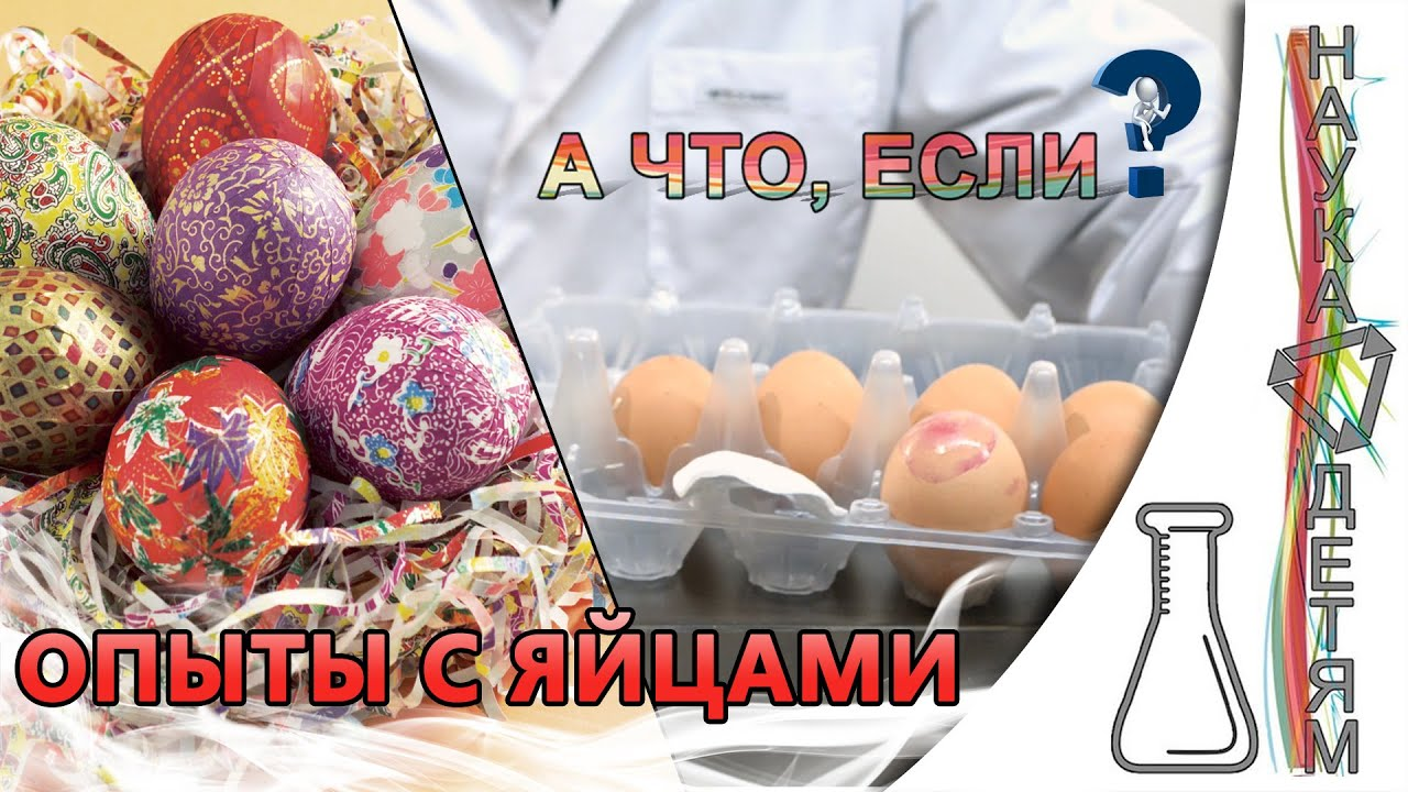 А что, если..? Опыты с яйцами/And what if..? Experiments with eggs
