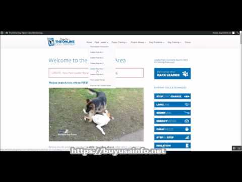 Doggy Dan's The Online Dog Trainer Review - Sneak Preview!