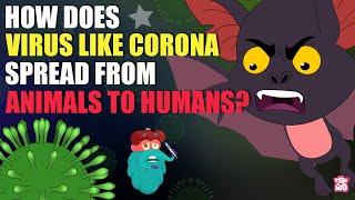 What Is Zoonotic Disease? | Zoonotic Diseases | Animal Virus | The Dr Binocs Show | Peekaboo Kidz