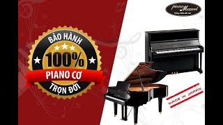 PIANO MOZART - 12 NĂM SONG HÀNH CÙNG BẠNv