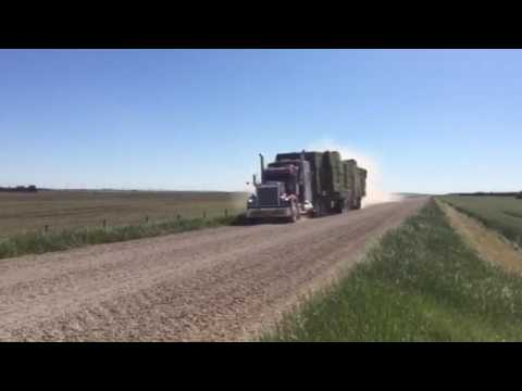 Load of Alfalfa Hay driving past