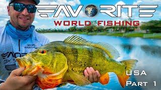 Вот это ОКУНЬ Ловля басса и павлиньего окуня в США Favorite World Fishing