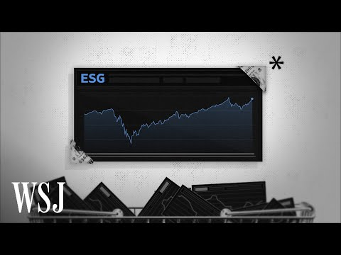 What Are ESG Funds and Why Are They Under Scrutiny?