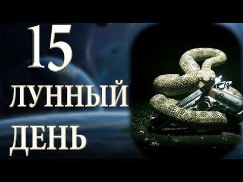 15 ЛУННЫЙ ДЕНЬ. ХАРАКТЕРИСТИКА