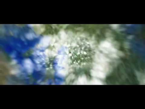 Кадры из фильма Космос между нами