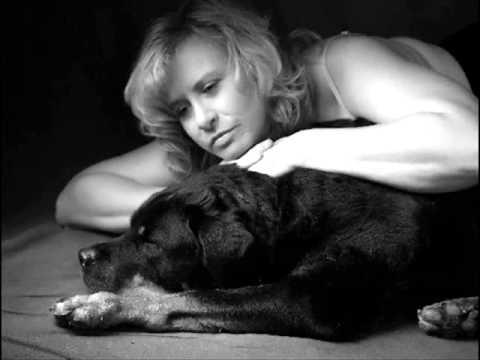 Alligator Records ♫ Satisfy Suzie ♫ Lonnie Mack