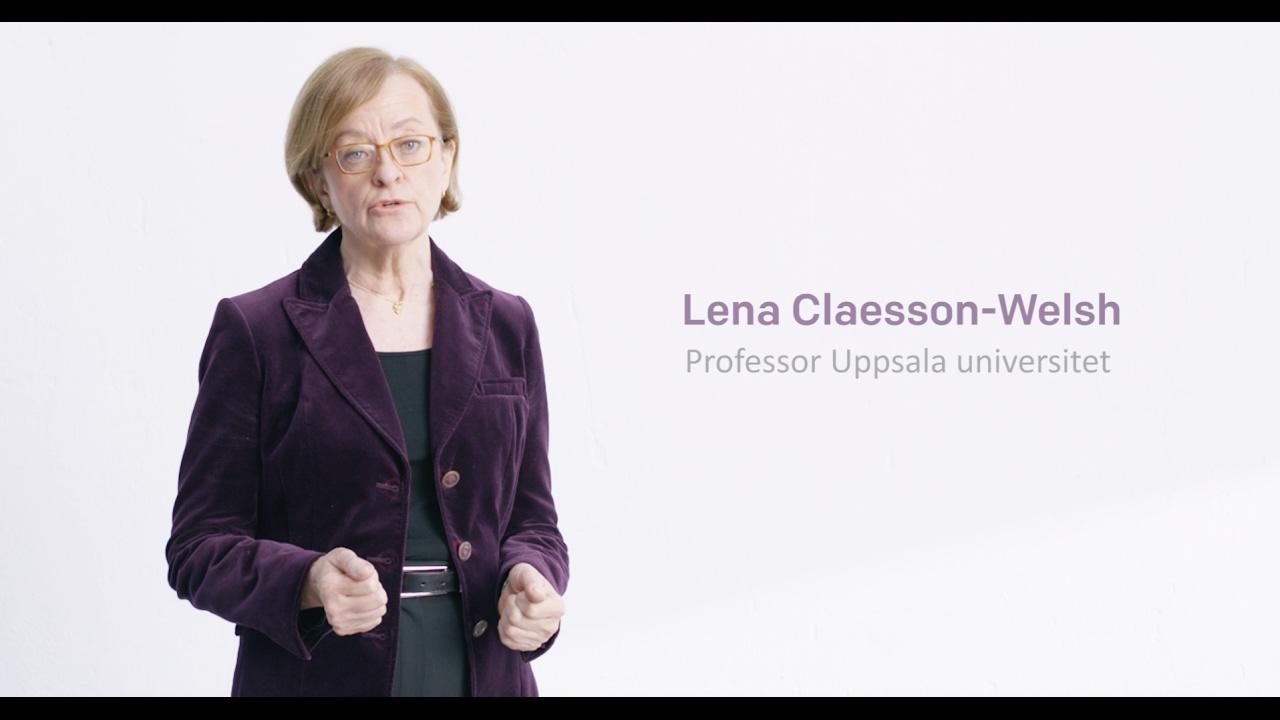 Årets cancerforskare 2017 - Lena Claesson-Welsh