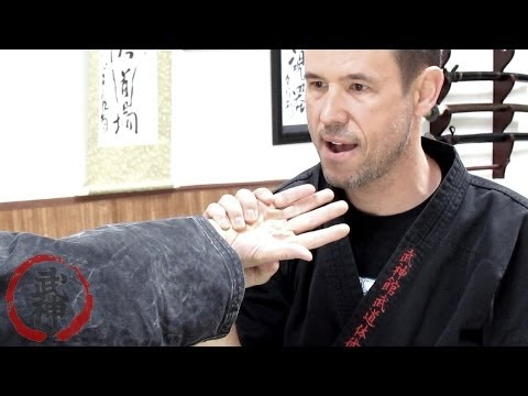 BUJINKAN JUJUTSU AND JUTAIJUTSU SEMINAR SERIES WITH SHIDOSHI DARREN DUMAS NOVEMBER 2013