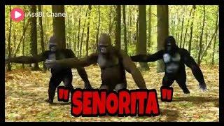 Senorita Via Vallen goyang gorila 2019