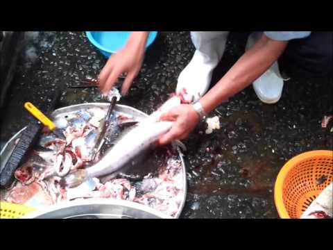 How to Clean a Snakehead Fish - The Vietnamese Way