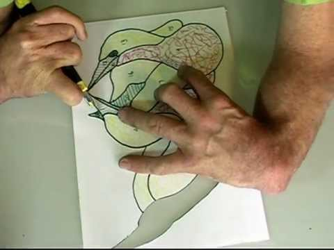 Make perfect stained glass templates from your design.