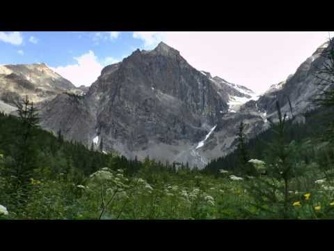 Hike from Emerald Lake to Emerald Basin, Yoho National Park, Field, BC, Canada