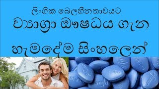 Viagra Sildenafil cupid caverta silegra erectile dysfunction sinhala health sl notes