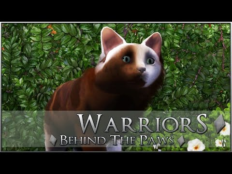 Creating Your Warrior Cats! CitySlick Stray Fighters!! • Warrior Cats: BehindthePaws