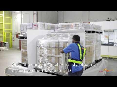 Logistics Services – Airline Pallet Buildup