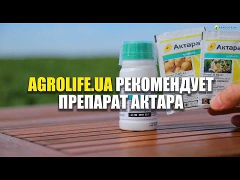 Актара Эффективный инсектицид: описание, характеристики, цена | Agrolife рекомендует