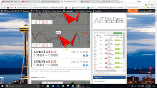 FSO Harmonic Scanner 6 Trading Results