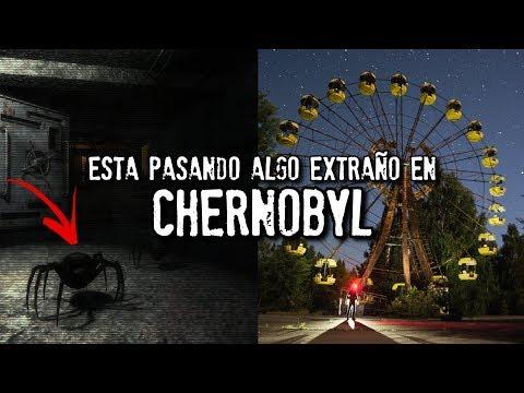 Está pasando algo extraño en CHERNOBYL   Video nunca antes visto