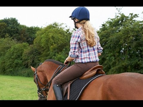 Want a smart child? SEND THEM HORSE-RIDING.. Japanese researchers found
