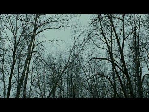 Rather Lovely Thing (Nick Cave & Warren Ellis)