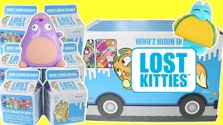 Lost Kitties Blind Milk Cartons - Who's Inside?