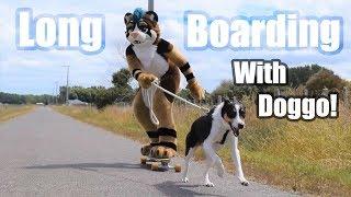 LongBoarding with Doggo! (In fursuit!)