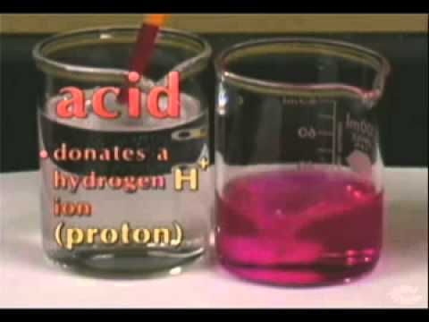 Elements of Chemistry: Acids, Bases and Salts