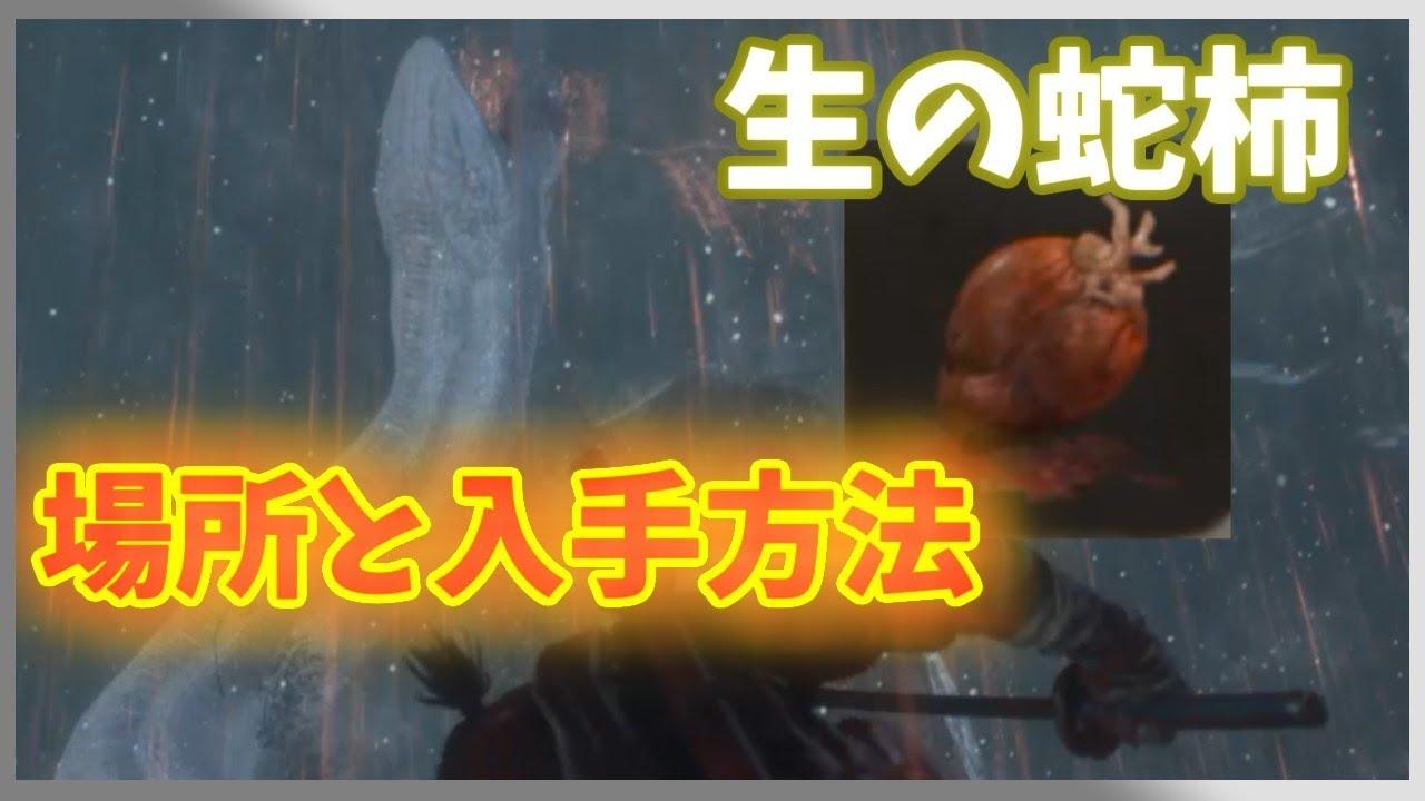 【SEKIRO攻略】生の蛇柿の入手方法解説 - YouTube